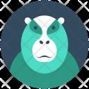 Ape Gorilla Hominoidea Icon