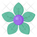 Apocynaceae Flower Icon