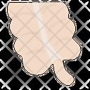 Appendix Icon