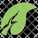 Apple Leaf Icon