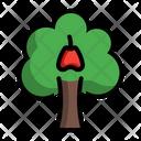 Java Appleplant Syzygium Tree Icon