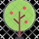 Apple Tree Nature Tree Icon