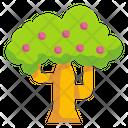 Apple Tree Apple Tree Icon