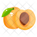 Apricot Fruit Healthy Food Icon