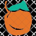 Apricot Food Fresh Icon
