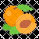 Apricot Fruit Diet Icon