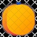 Apricot Fruit Fresh Icon