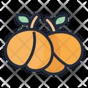 Apricot Fruit Food Icon