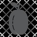 Apricot Fruit Plum Icon