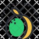 Apricot Food Fruit Icon