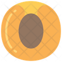 Apricot Food Eating Icon