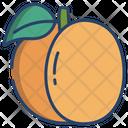 Apricot Icon