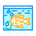 Aquarium Fish Market Icon