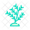Aquatic Coral Color Icon