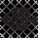 Aquatic Fish Icon