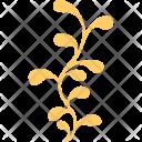 Aquatic Plant Icon