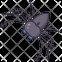 Arachnids Icon