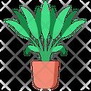 Areca Palm Icon