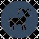 Aries Sign Zodiac Icon