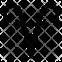 Aries Symbol Icon