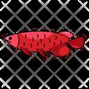 Arowana Fish Freshwater Icon