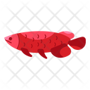 Arowana Unique Animal Icon