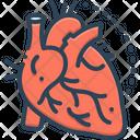 Arteries Veins Artery Icon