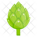 Artichoke Organic Food Healthy Food Icon