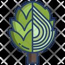 Artichoke Vegetarian Vegetable Icon