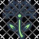 Asafoetida Asafetida Ayurveda Icon