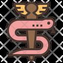 Asclepius Rod Snake Icon