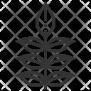 Ash Leaf Plant Icon