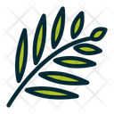 Leaf Ash Leaf Foliage Icon