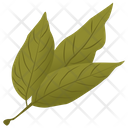 Ash Leaves Icon