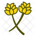 Asparagus Vegetables Icon