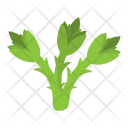 Asparagus Vegetable Green Icon