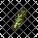 Asparagus Vegetable Vegetables Icon