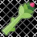 Asparagus Health Vegetarian Icon