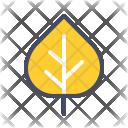 Aspen Icon