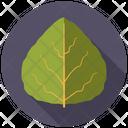 Aspen Tree Nature Icon