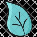 Aspen Leaf Blossom Flower Icon