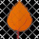 Aspen Leaf Birch Leaf Orange Leaf Icon