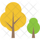 Aspen Deciduous Forest Icon