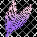 Aspidistra Icon