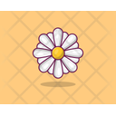Aster Spring Flower Agriculture Icon
