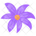 Aster Aster Flower Calendula Icon