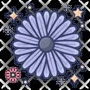 Aster Natural Flower Garden Flower Icon