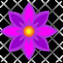 Astra Icon