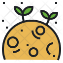 Science Astronomy Plant Icon