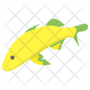 Atlantic Silverside Icon